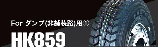 For 舗装・非舗装路用ダンプトラックHK859